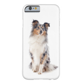 Blue Merle Shetland Sheepdog Smartphone Barely There iPhone 6 Case