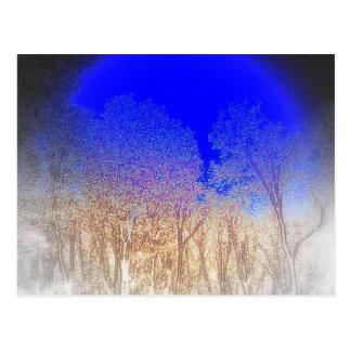Blue Moon Baby Postcard