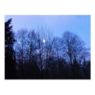 Blue Moon Wedding Papers Postcard