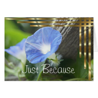 Blue Morning Glory - blank inside Card