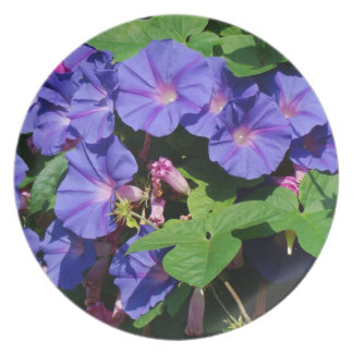 Blue Morning Glory Vine Flowers Floral Plate