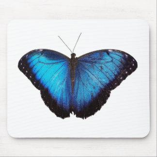 Blue Morpho Butterflie Mouse Pads