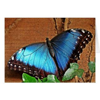 Blue Morpho - Butterfly Card