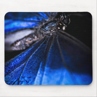 Blue Morpho butterfly closeup Mouse Pad