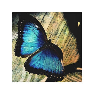 Blue Morpho Butterfly Insect Pretty Art Print