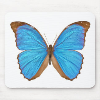 Blue Morpho Butterfly Menelaus Blue Morpho Morph Mouse Pads