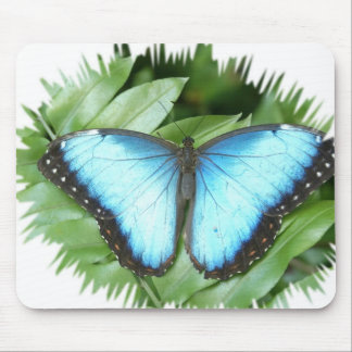 Blue Morpho Butterfly Mousepads