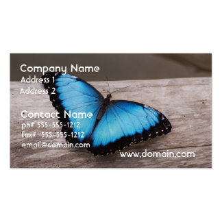 Blue Morpho Butterfly Pack Of Standard Business Cards