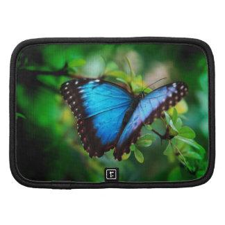 Blue Morpho Butterfly Planner