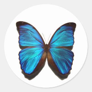 Blue Morpho Butterfly Round Sticker