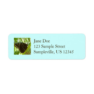 Blue Morpho Butterfly Tropical Nature Photography Return Address Label