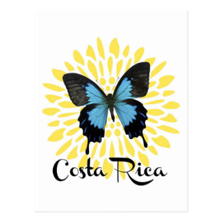 Blue Morpho Costa Rica Souvenir Postcard