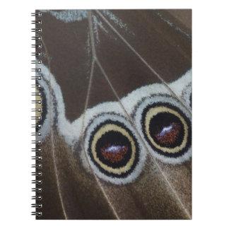 Blue Morpho, Morpho menelaus, adult newly Spiral Note Books
