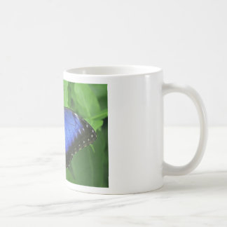 Blue Morpho Coffee Mugs