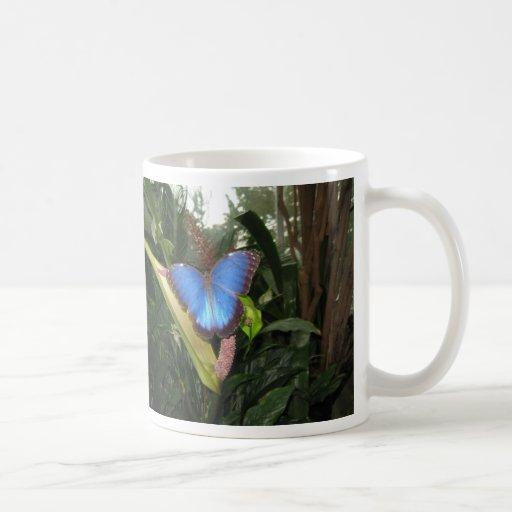 Blue Morpho Peleides Mug