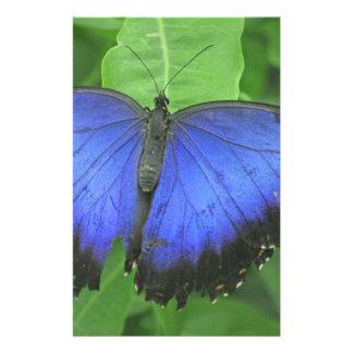 Blue Morpho Stationery