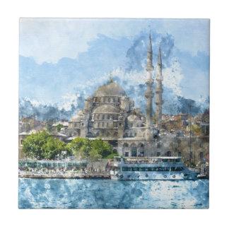Blue Mosque in Istanbul Turkey Ceramic Tiles