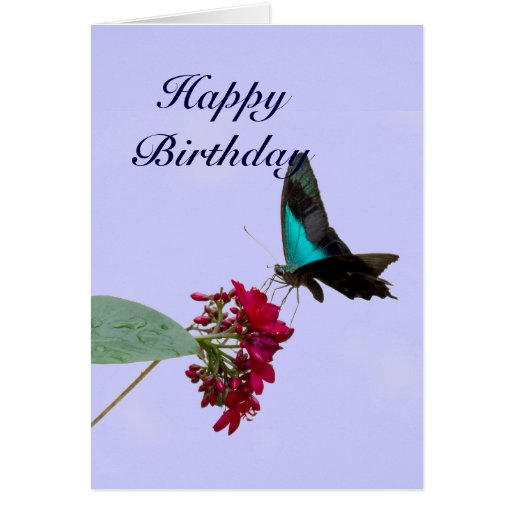 Blue Mountain Swallowtail Butterfly Birthday Card
