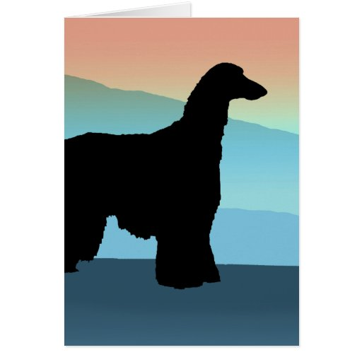 Blue Mountains Afghan Hound Card