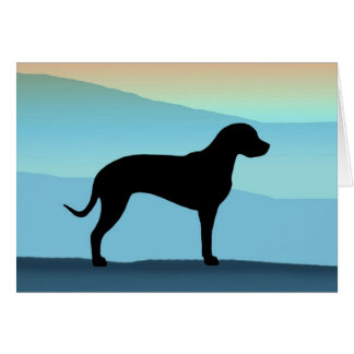 Blue Mountains Catahoula Card