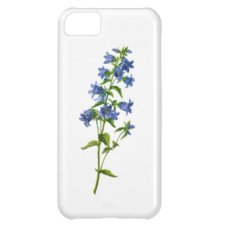 Blue Nettle-Leaved Bellflower Drawn From Nature iPhone 5C Covers