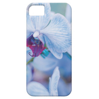 Blue Orchid iPhone 5 Cover