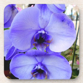 Blue Orchids Coaster