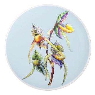 Blue orchids  painting ceramic knob