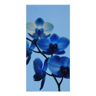 Blue Ordhid Photo Card