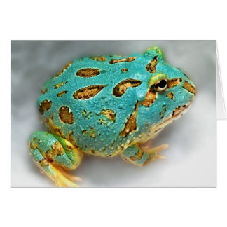 Blue Pac-Man Frog – Waiting, Waiting, Gotcha! Card