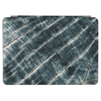 Blue Painted Wood iPad Air Cover
