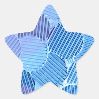 Blue Paradise Star Sticker
