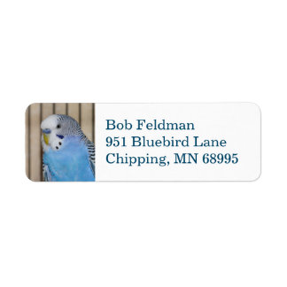 Blue Parakeet return address label
