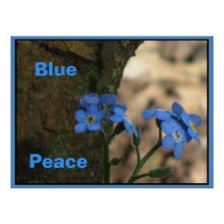 Blue Peace Wild Flowers Posters