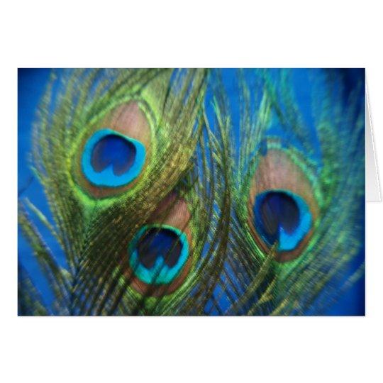 Blue Peacock Feather Wedding Card