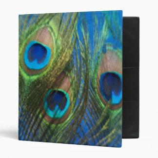 Blue Peacock Feathers Vinyl Binders