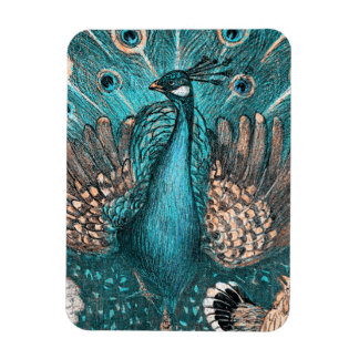blue peacock magnet