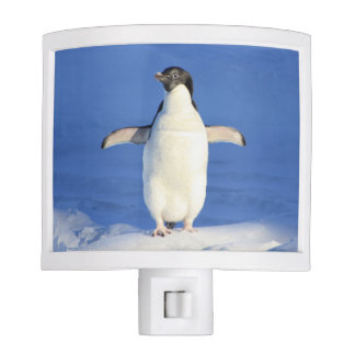 Blue penguin nite lites