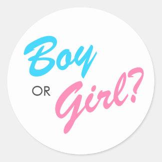 Blue & Pink Boy or Girl Gender Reveal Stickers