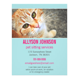 Blue & Pink Photo Pet Sitting Services flyer's 4 Flyer