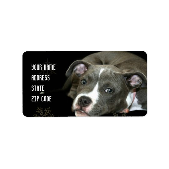 Blue pitbull puppy address labels