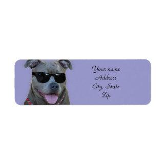 Blue pitbull with glasses return address label
