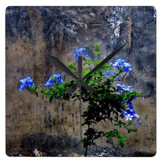 Blue Plumbago Flower Square Wall Clock