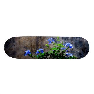 Blue Plumbago Skate Board Deck