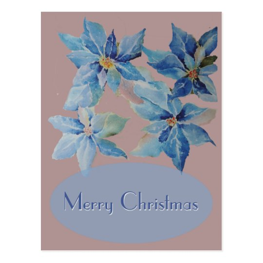 Blue Poinsettias on Dusty Pink Background Postcard