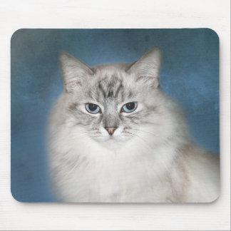 Blue point Himalayan cat Mouse Pad