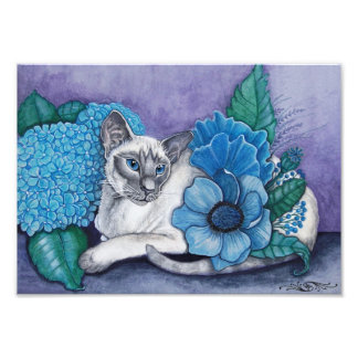 Blue Point Siamese Photo Print