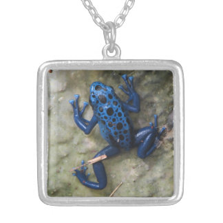 Blue Poison Dart Frog Silver Plated Necklace