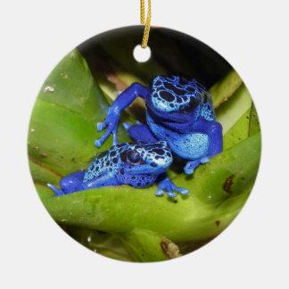 Blue Poison Dart Frogs In Leaf 1 Ceramic Ornament