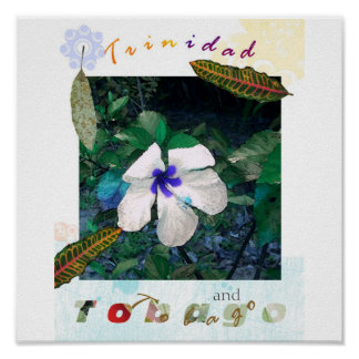 blue  pollen ts zazzle poster